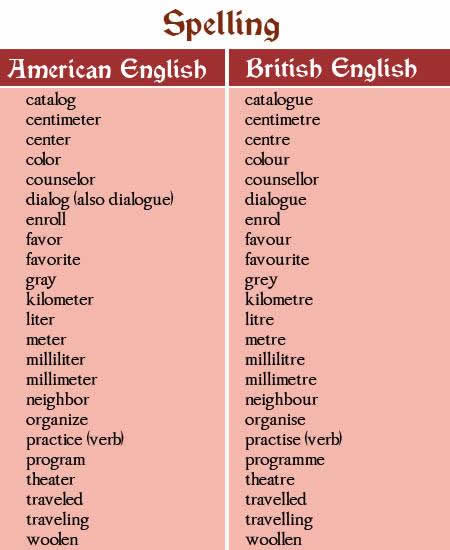 basic english sentences pdf