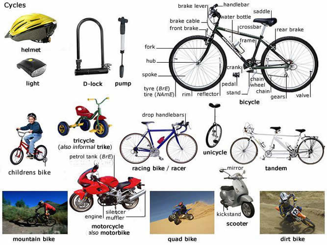 different types if cycles English lesson