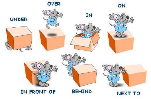 Preposition In Learn In Marathi All Complate: Learning English With Pictures
