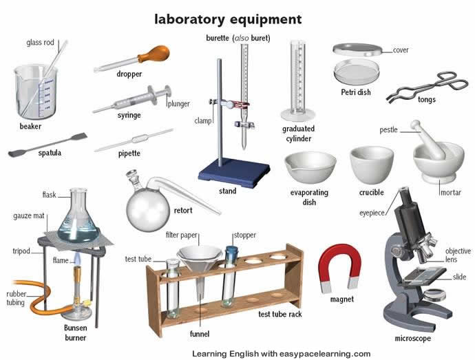 Learning the English words for laboratory equipment and their parts