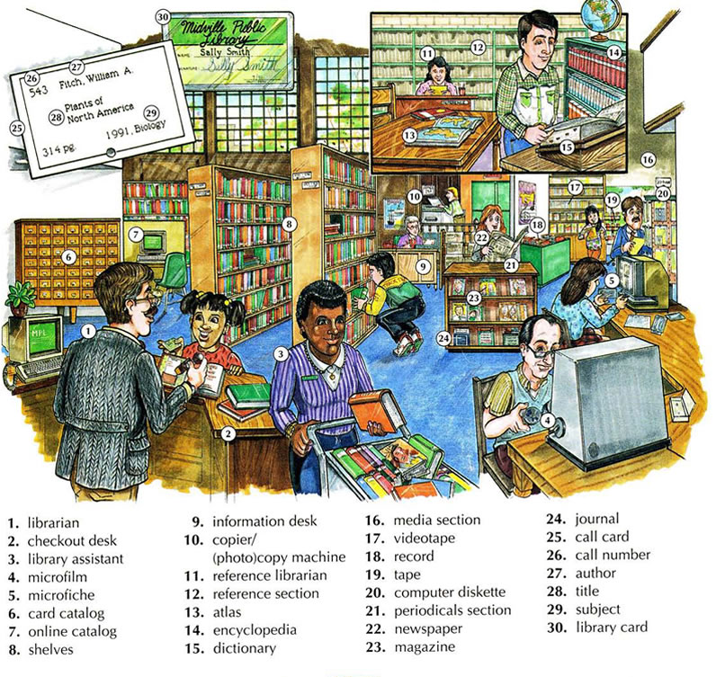 Library vocabulary with pictures English lesson