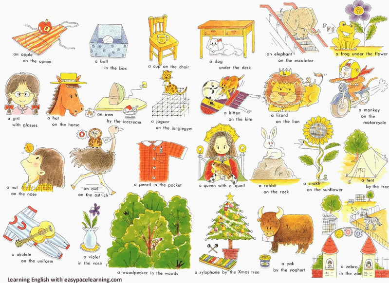 Prepositions Position And Location Vocabulary List