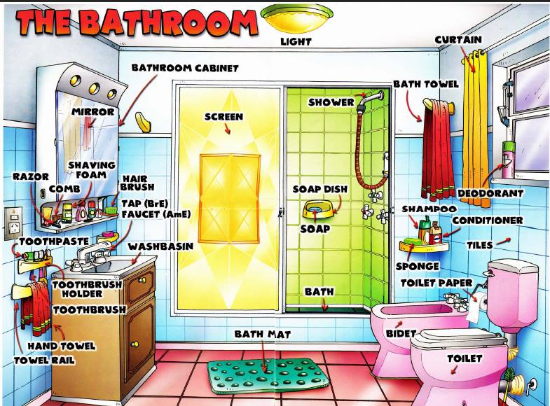 Learning the English words for bathroom items