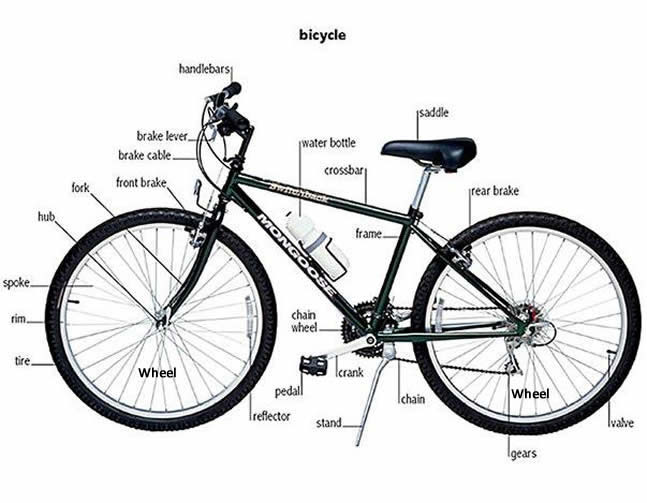 Bikes Bicycles Part Bicycle Parts Vocabulary