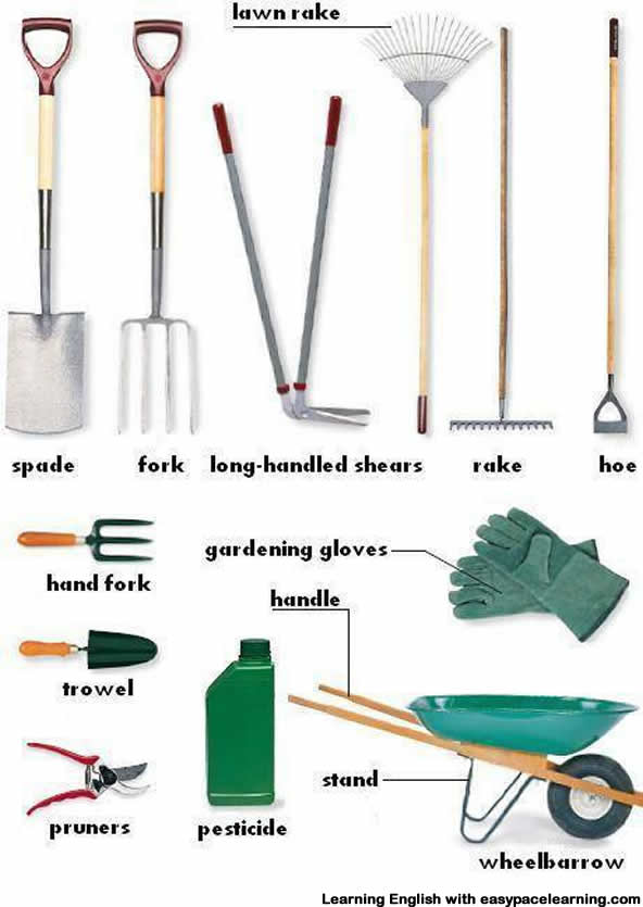 Gardening equipment vocabulary with pictures learning english for Tools for backyard gardening
